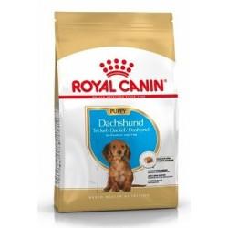 Royal Canin Breed Jezevčík...