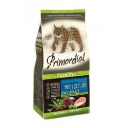 Primordial GF Cat Adult...