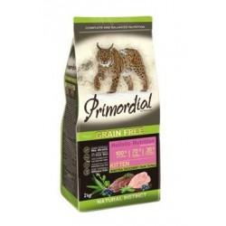 Primordial GF Cat Kitten...