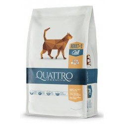 QUATTRO Cat Dry Premium all...